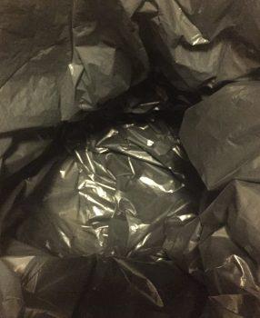 Tag 1: Erste Erkenntnisse und Mülleimer leer