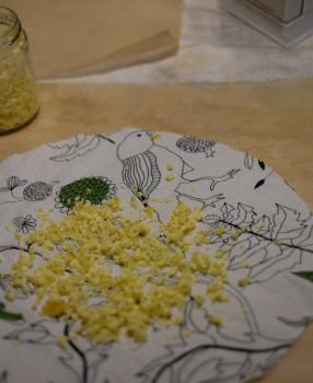 Kleines 1mal1: Bienenwachstücher selber machen
